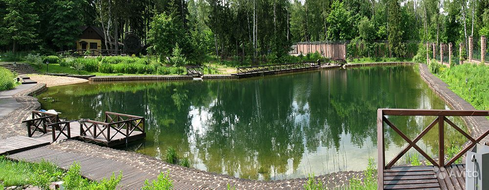 как организовать озеро для платной рыбалки