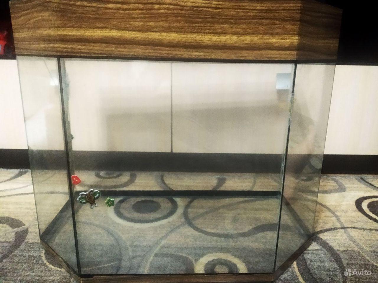 Отдам аквариум на 50 л купить на Зозу.ру - фотография № 1
