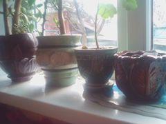 Цветочные горшки,вазы керамика
