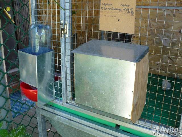 Поилки, кормушки для кроликов и птицы - купить, продать ...: https://www.avito.ru/maloyaroslavets/tovary_dlya_zhivotnyh/poilki_kormushki_dlya_krolikov_i_ptitsy_95638743